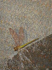 20140211122215-dragonfly