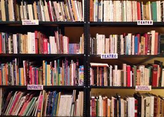 Libreria Donceles, (detail), Pablo Helguera