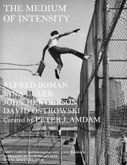 The Medium of Intensity, Carl Kostyál, Stockholm, David Ostrowski