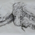 20140226024525-01_esmacadam2013fallingdiagram136x80incharcoalonpaper