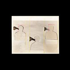 Hostage: The Bachar Polaroids, Walid Raad