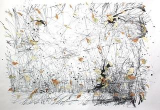 Bellows, Peter Foucault