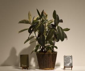 Your Rubber Plant , Michelle Wiener, Tucker Neel
