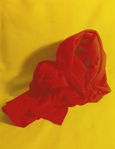 20140313225301-redfold