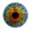 Eyefixlogo