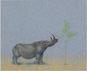 Rhino, Tom Knechtel