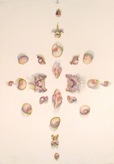 Kaleidoscope I, Lisa Larson
