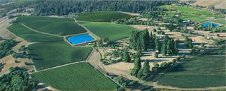 Irrigation Pond, Sandra Mendelsohn Rubin