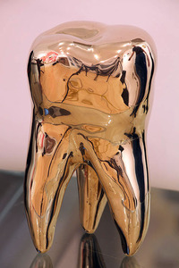 20140429114925-david_shrigley_brass_tooth_edition_80