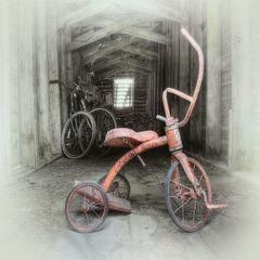 """Michael\'s Tricycle"", Cynthia Fleury"