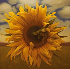 20140522215611-alex_zapata_sunflower_48_x_48_oil_on_canvas