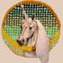 20140522215852-captured_unicorn_slide