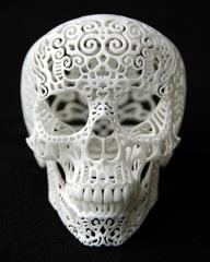 Crania Anatomica Filgre , Joshua Harker