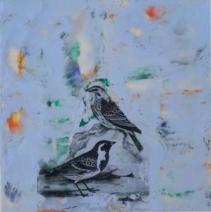 20140611210936-bird3