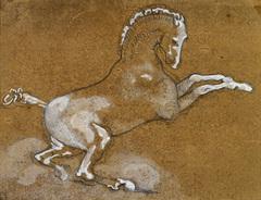 20140613080714-rearing-horse