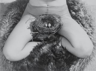 Nest, Birgit Jurgenssen