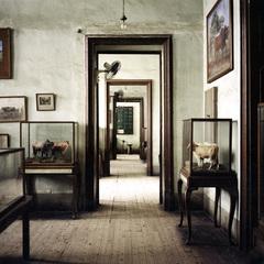 Museum 11, #3, Jason Larkin