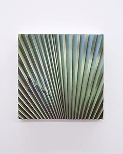 20140706092512-michaelhenryhayden_palm_leaf_9x90