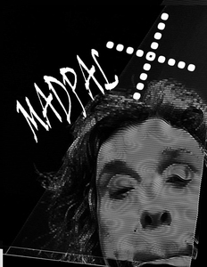 20140721185100-selfienbforcrowd_seeme_madpalx