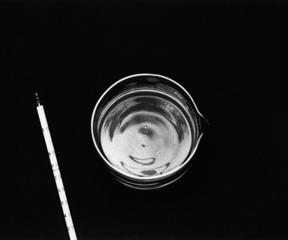 Accrescimento di un cristallo 2, Amalia Del Ponte