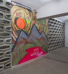 Installation view from the series USSA Wellness Center, 2014 WELIVETHEMAGIC, Zachary Cahill