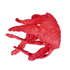 20140805112421-octopus_1