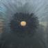 20140805145510-gunmetal-starburst_crop