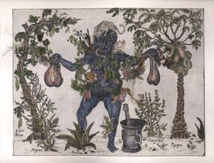 20140810022750-sycorax_herbarium_edhi