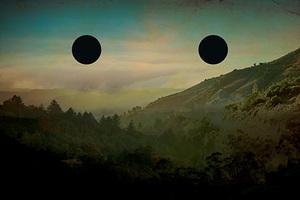 20140812020409-fried_landscape