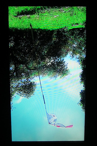 20140813213457-dr_video_close_800x533