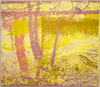 20140827132136-2014_07_lindquist_duke_energy_dan_river_01