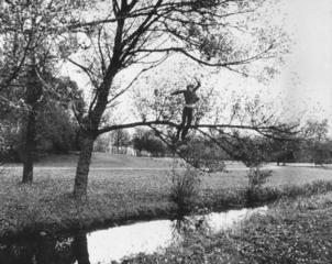 Broken Fall (Organic), Bas Jan Ader