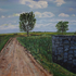 20140909180944-two_trees_in_france__acrylic_on_canvas__30_x40_