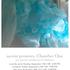 20140911020802-lisa_kellner_chamber_one