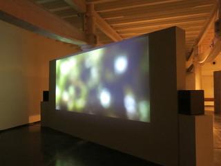 installation view, Desire Machine Collective
