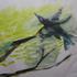 20141005162337-the_bird