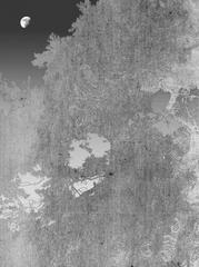 20141014161751-full_moon