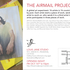 20141030041912-airmail_project1
