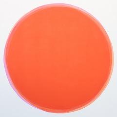 Indo Orange Aqua Burn, Dawn Arrowsmith