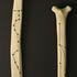 20141114174515-divination_bones__detail_2