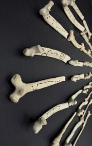 20141114174532-divination_bones__horizontal_-_extreme_side_view