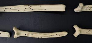 20141114174554-divination_bones__horizontal_-_detail_1