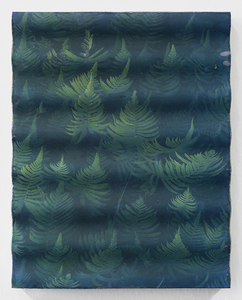 20141118155358-kauai-ferns-concrete-wave1