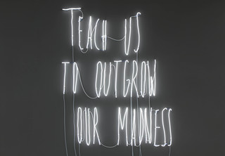 Teach Us To Outgrow Our Madness, Alfredo Jaar