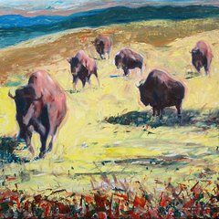 Running Buffalos, Jeff Tabor