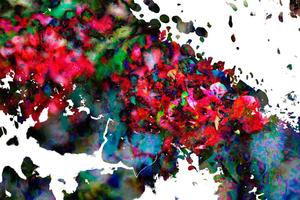 20141220210612-masood-kamandy_botanical_2012_digital_print_44x66