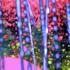 20150119175745-prismpipefluidity1