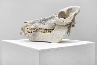 Anatomize, Alex Sweet