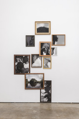 Exquisite Terribleness in the Mangrove, installation view, Todd Gray