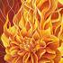 20150215201521-fire_petals_artspa_an